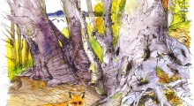 """""""Kend din skov"""" søndag 14. oktober 2018 kl. 13-16"""